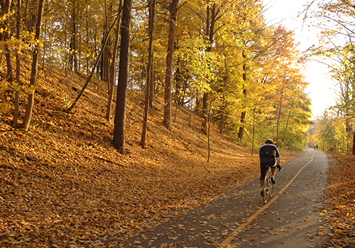 Riding bike with autumn leaves