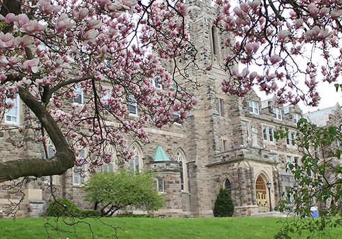 Ursuline Hall behind a magnolia tree