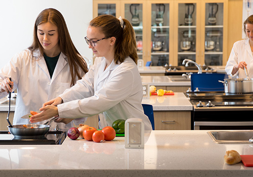 Students working together in a food lab.