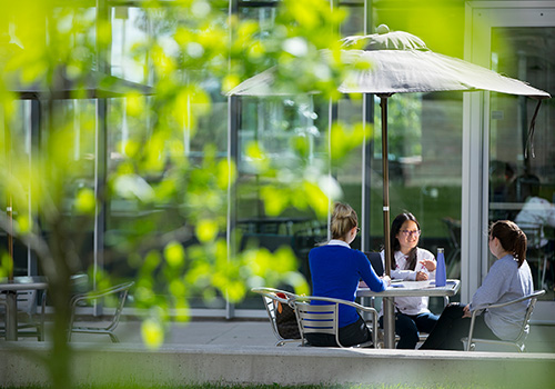 Students sitting outside on Bresica's campus